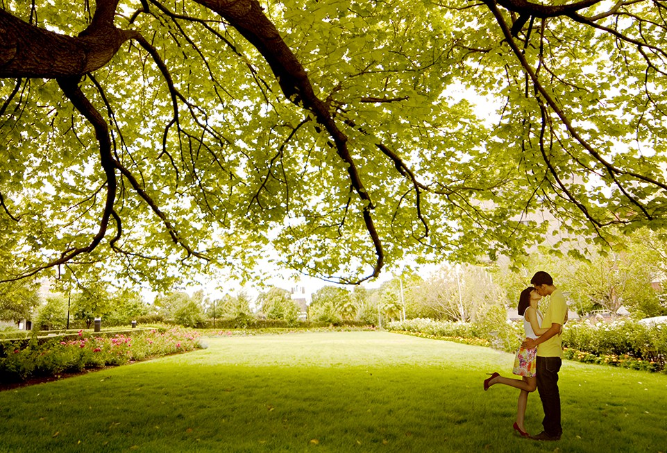 A couple share a kiss under the tree